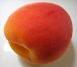 apricotsolo 1